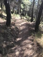 CxM Sierra de Gador Dolias (10)