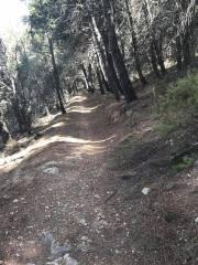 CxM Sierra de Gador Dolias (11)
