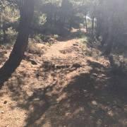 CxM Sierra de Gador Dolias (12)