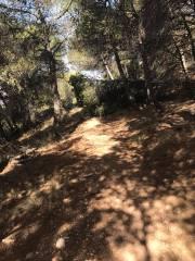 CxM Sierra de Gador Dolias (2)
