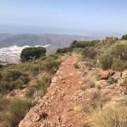 CxM Sierra de Gador Dolias (7)