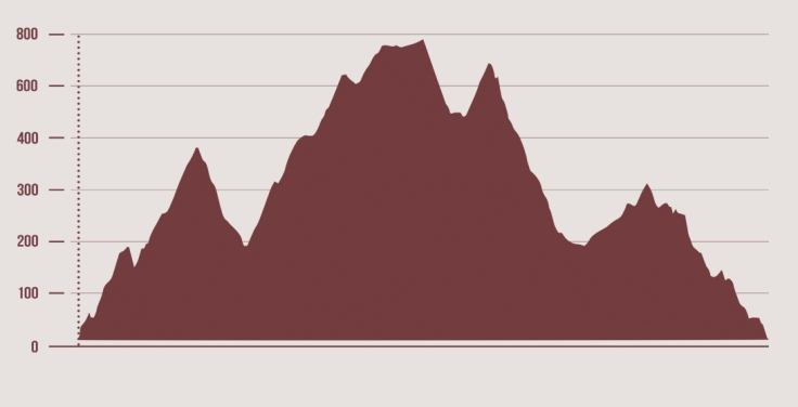 perfil Campeontao Andalucia Trail