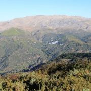Trail Gran vuelta Valle Genal 2017 (334)