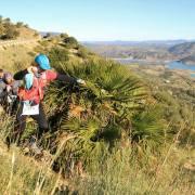 Trail Las Palomas 2017 (133)