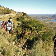 Trail Las Palomas 2017 (150)