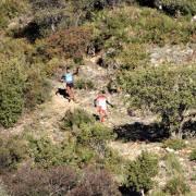 Trail Las Palomas 2017 (19)