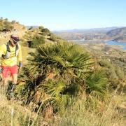 Trail Las Palomas 2017 (4)