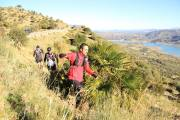 Trail Las Palomas 2017 (45)