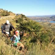 Trail Las Palomas 2017 (65)