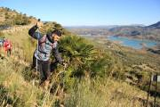 Trail Las Palomas 2017 (89)