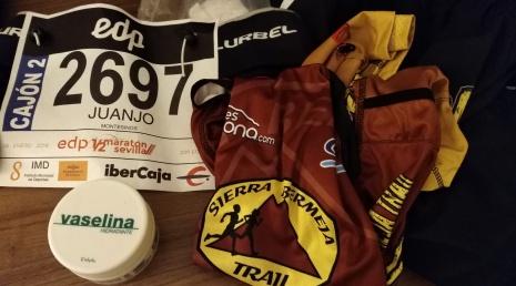 Media Maraton Sevilla 2018 (15)
