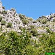 101 km Ronda 2018 Trail Running Andalucia (166)