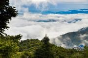 Pinsapo Trail 2019 (5)