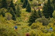 Pinsapo Trail 2019 Jorge Morales (3)
