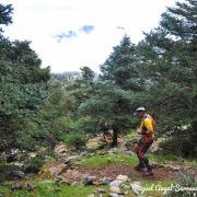 Pinsapo Trail 2019 Miguel Angel Serrano (2)