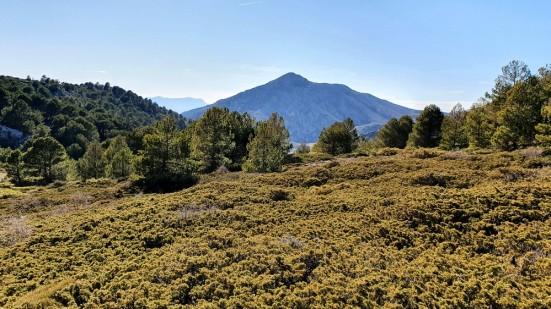 46 Cerro de la Serezuela