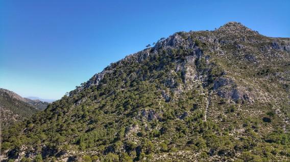 8 Cerro de los machos